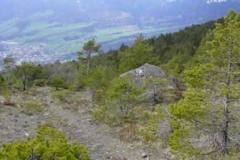 Bergsturz Goldau